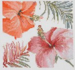 bl1169-tropical-blush-iii