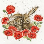 love-is-in-the-hare